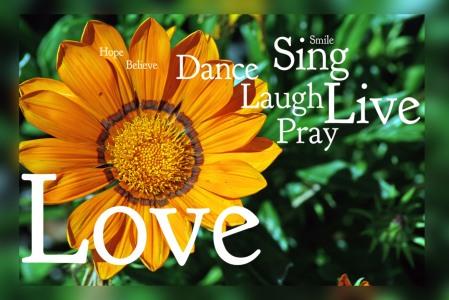 Live Pray Love
