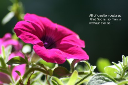 All creation