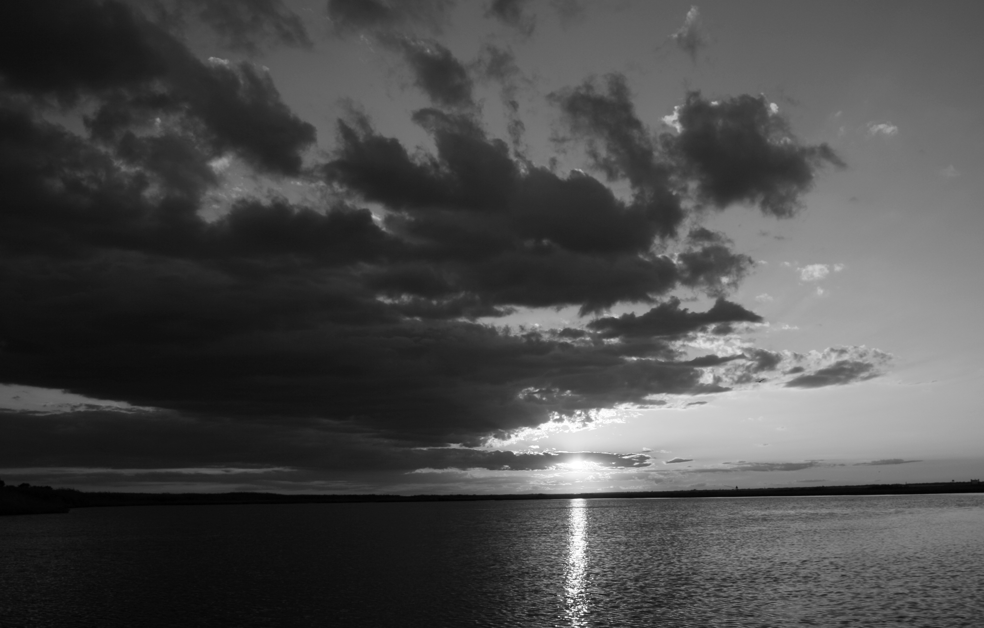 BW Sunset